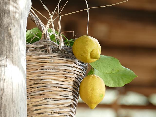 Limoncello: una delizia che nasce dai limoni IGP di Sorrento